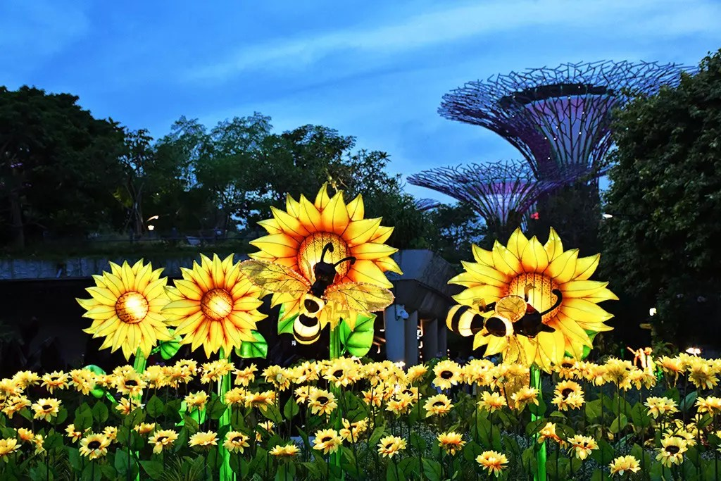 Field of Sunshine at Mid-Autumn @ Gardens by the Bay 2017