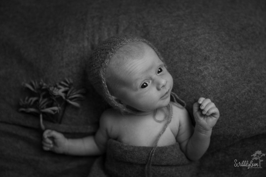 Wollongong Newborn Photographer
