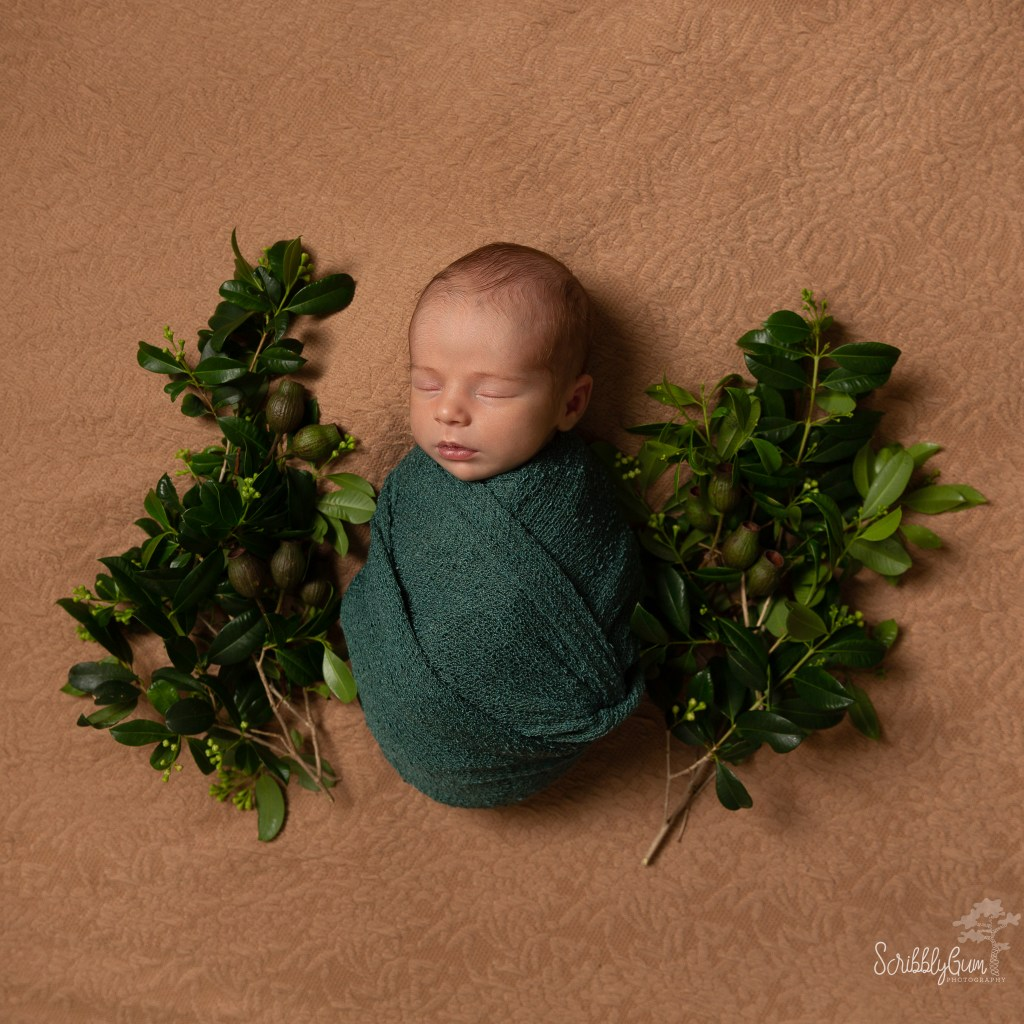 Nature Inspired Newborn Photography