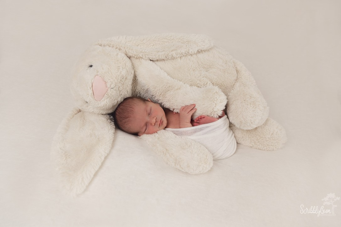 Wollongong In Home Newborn Photographer