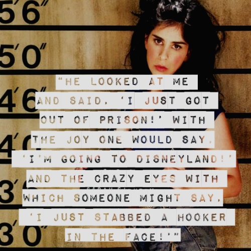 sarah-silverman-jailed_FINAL