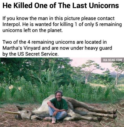 Il a tué la dernière Licorne