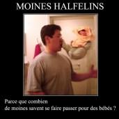 Moines Halfelins
