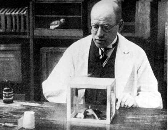 Docteur Ludwig Levy-Lenz