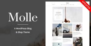 Molle - A WordPress Blog & Shop Theme