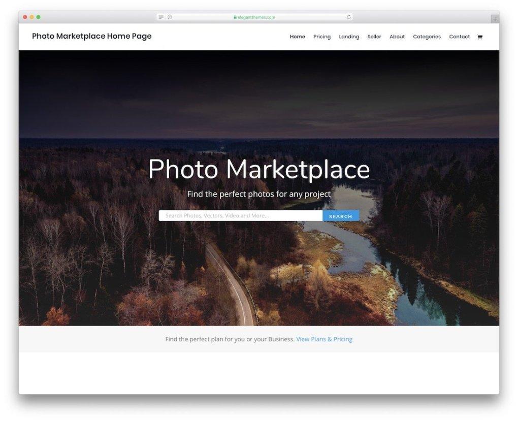 modèle de site de photographie divi