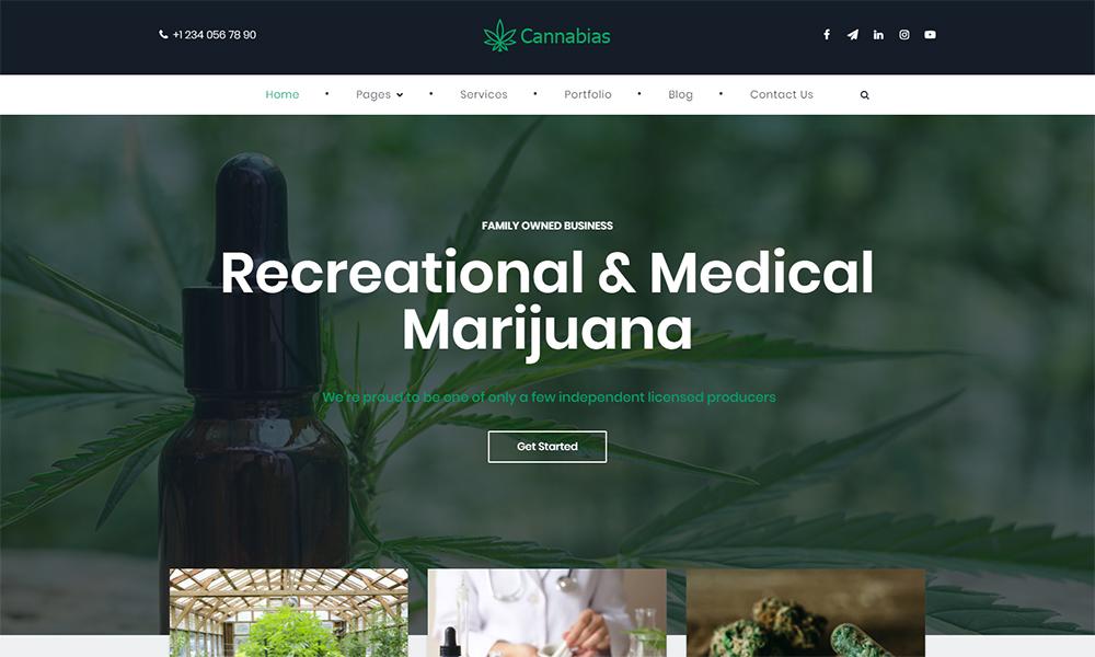 Thème WordPress pour entreprise de marijuana médicale Cannabias