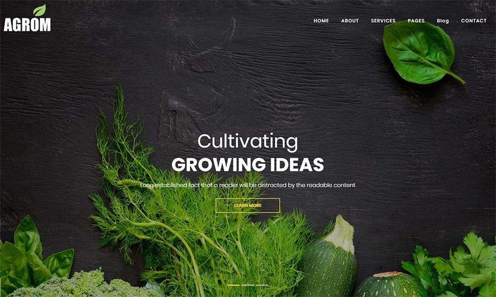 Agrom - Thème WordPress pour l'alimentation biologique et agricole