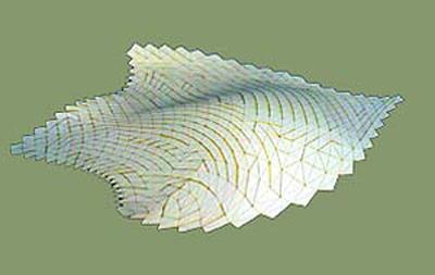 fish2m-g.jpg
