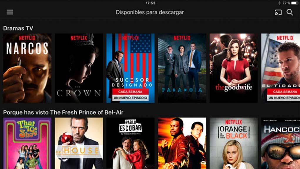 Apartado de Netflix para descarga