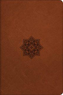 Baylor Annotated Study Bible NRSB