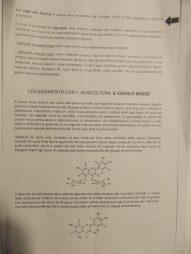 """""""Il colore rosso in chimica"""", elaborato proposto dalle classi I C e I D (p. 3)."""