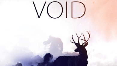 Photo of Landmark – Void (2013)