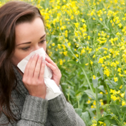 Allergies and Asthma: What's Got You Wheezing?