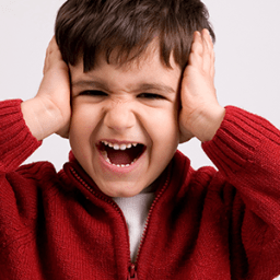 Is your child sensitive to touch, sounds, sights and smells?
