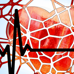 Autoimmune diseases can be a strong predictor of heart disease