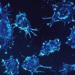 Why immunotherapy is the next frontier for treating disease