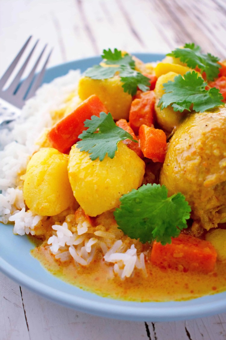 A close up view of a plate of chicken curry with rice