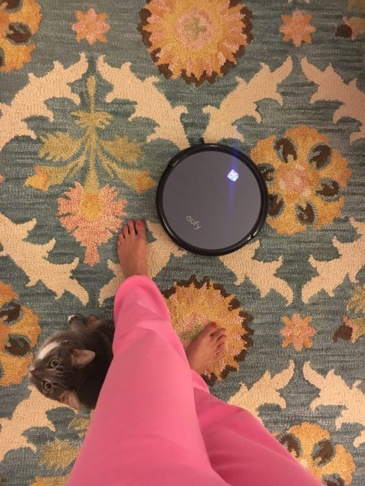 Our Favorite Prime Day Deal - Eufy - Robo-Vac - SC's Scoop