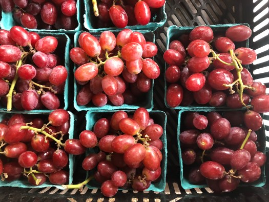 Nalls Produce - Grapes - Picking out Pumpkins & Produce in Northern Virginia - SCsScoop.com