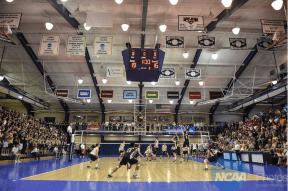 Photo Courtesy: NCAA.com