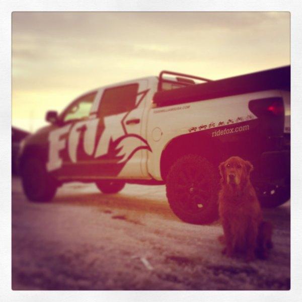 Fox Racing Shox Truck Wrap Scs Wraps