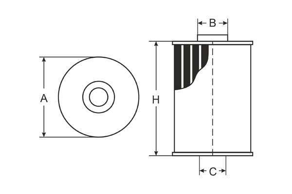 SC 7065 P Fuel filter SCT