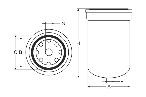 ST 316 Fuel filter SCT