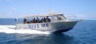 Dive Me