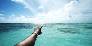 Dive shop search engines