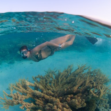 2. Without flash you can still produce pleasing images, especially if shooting in shallow water