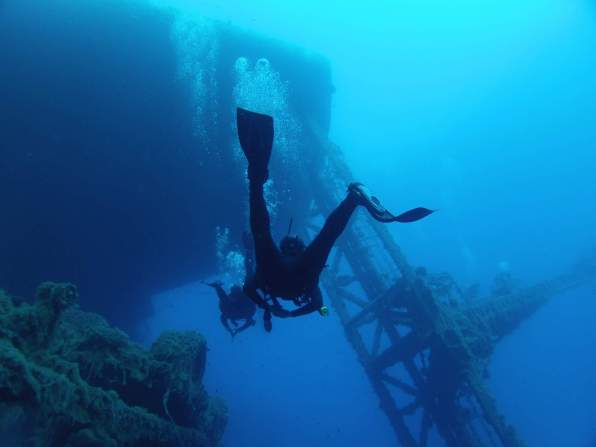 Zenobia-divers
