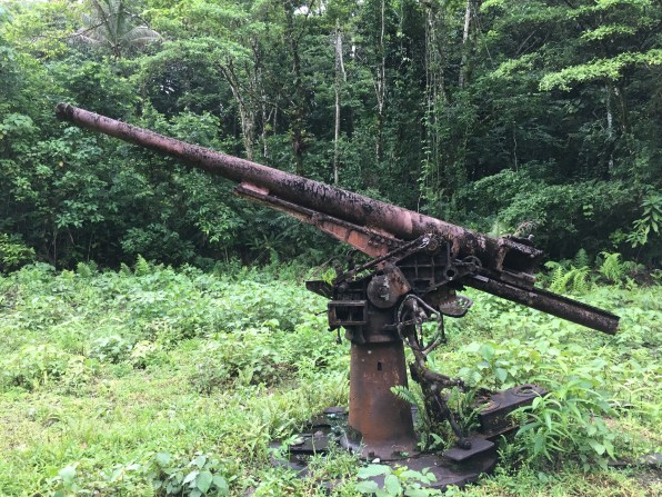 Visit a pair of Japanese anti-aircraft guns, buried deep in the jungle near Munda, while on a tour conducted via restored WWII jeep. (Photo credit: Rebecca Strauss)