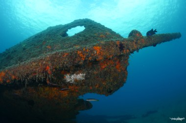 The wreck of the Lidador is the main attraction in the Underwater Archaeological Park. (Photo credit: Joao Bruges)