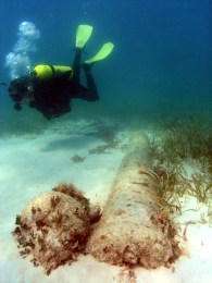 Diver with a replica cannon (Photo courtesy of Florida Bureau of Archaeological Research).