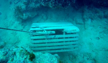 Florida Keys fishermen lost an estimated 150,000 lobster traps. Credit: Steve Gittings/NOAA