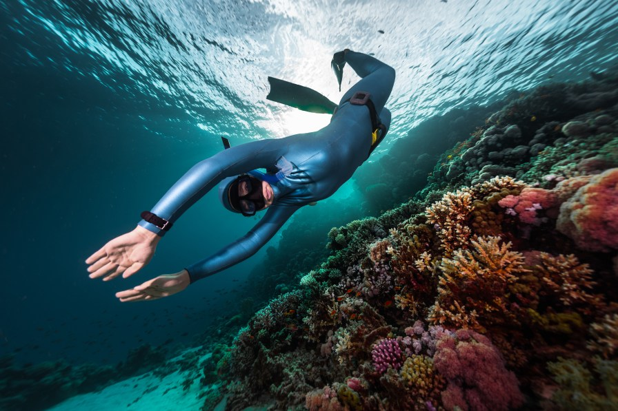 Scuba Diving Tips & Tricks for Beginners