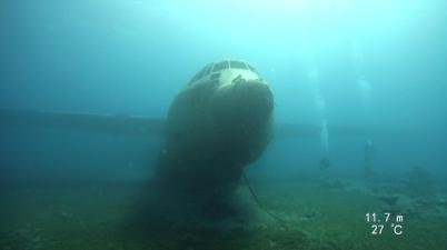 The C130 plane wreck (credit: Shelley Collett)