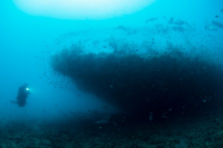 The wreck of the SS Yongala appears in silhouette from the sand beside the ship (Photo: Nadia Aly)