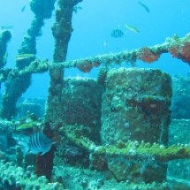 dive_sites_debbie_wreck