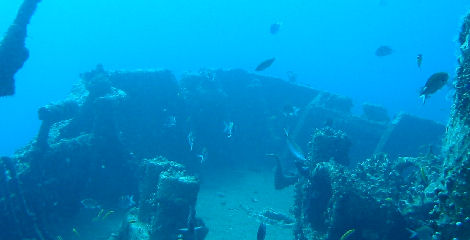 dive_sites_jane_c