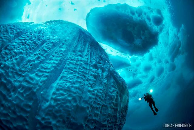 Diver swimming along an iceberg in crystal clear water holding a video camera with lights on, Tasiilaq Fjord, East-Greenland, Atlantic Ocean, Arctic, global warming.