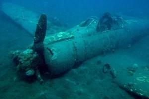 Wrek Diver