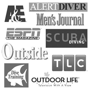 Celebrity diving show times