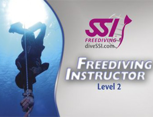 SSI Freediving Kurs Level 1 und Level 2