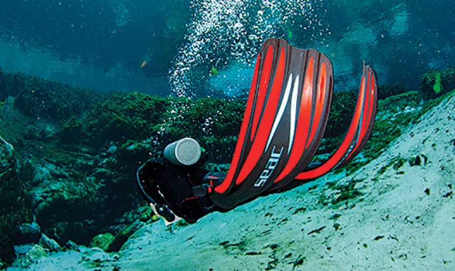 How to Pick the Right Scuba Diving Fins