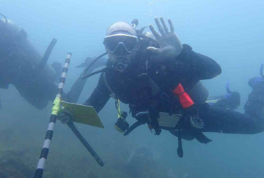 Marine conservation programs for the summer