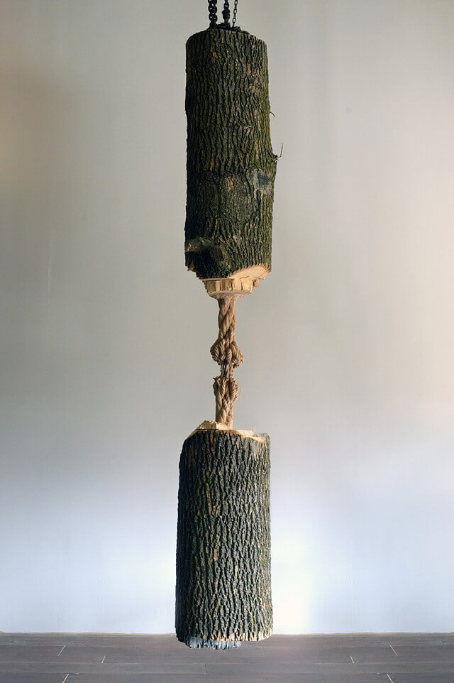 wood sculpture of hanging tree held together by rope, Schrodinger's Wood by Maskull Lasserre