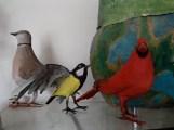 tourterelle , mésange charbon et cardinal