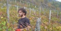 Jonni Fendi.... viticoltura di resistenza